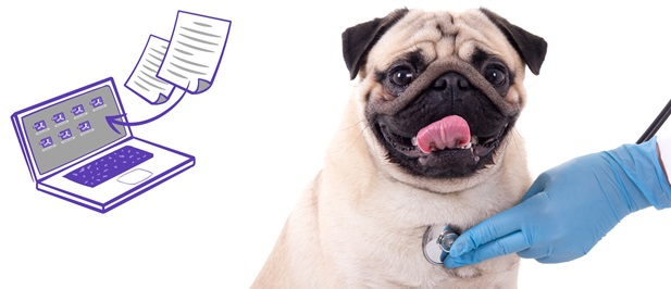 Veterinary Data Capture Services
